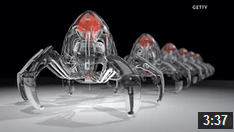 Nanotechnology: Swallow the Surgeon? – Video