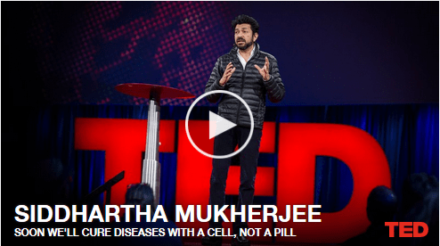 Curing Diseases with a Cell – Video