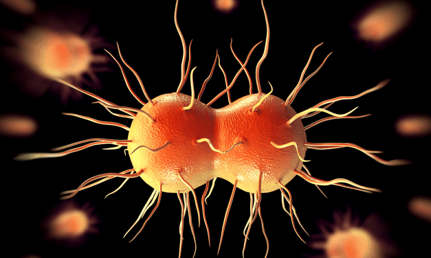 Losing Ground Against Gonorrhea – The Rising Antibiotic Resistance