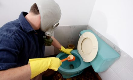 More germs than a toilet seat