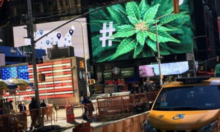 Americans' view of marijuana is rosy, and unscientific