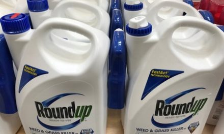 Monsanto ordered to pay $289 million in world's first Roundup cancer trial