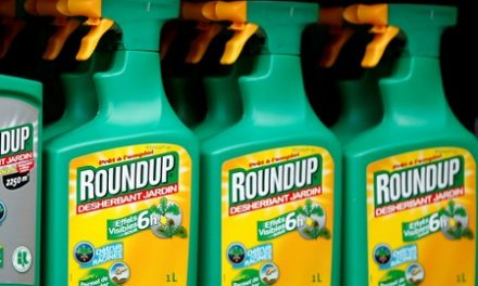 Bayer Roundup cancer trial goes to jury after closing arguments